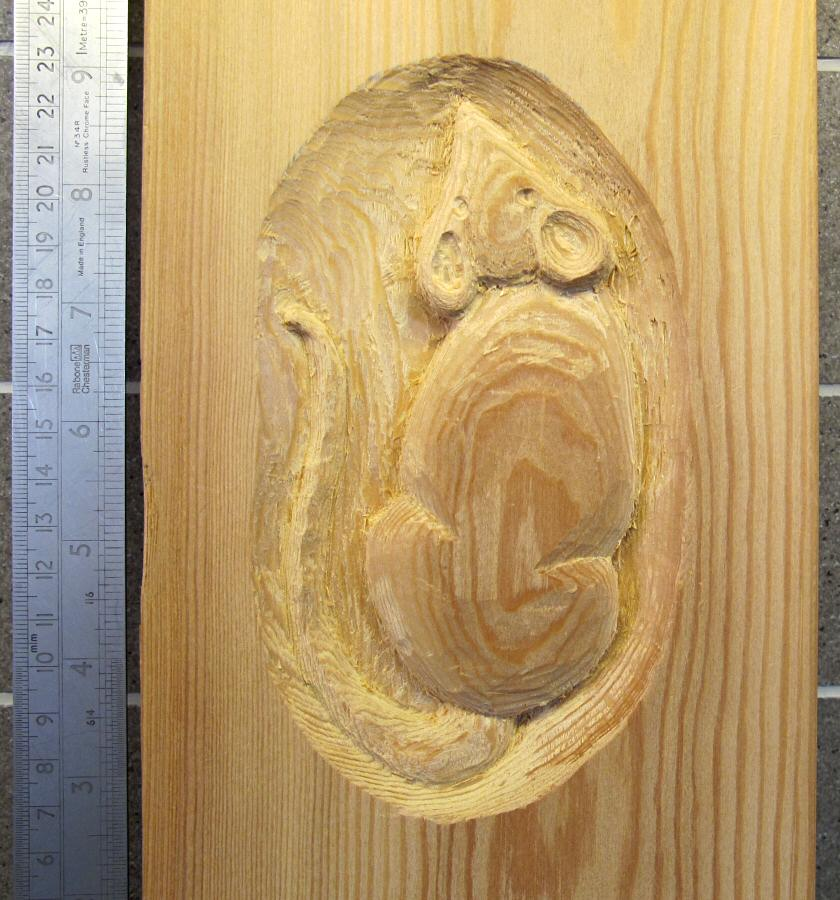 mouse carving